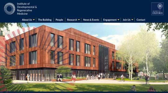 Institute of Developmental and Regenerative Medicine (IDRM)